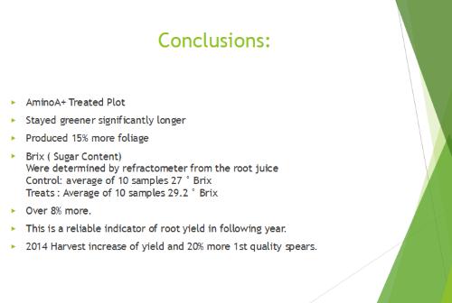 AminoA Biostimulants Asparagus 2013