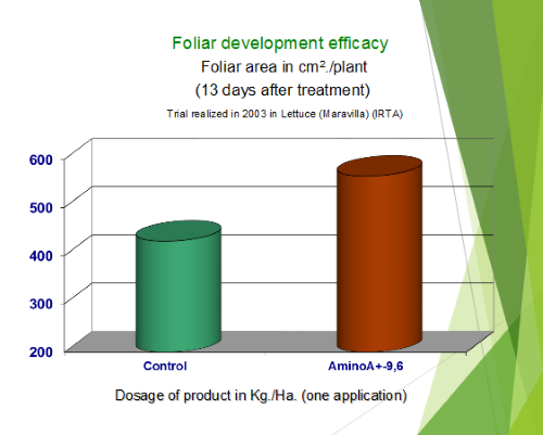 Follar Development Efficacy 13 Days After Treatment