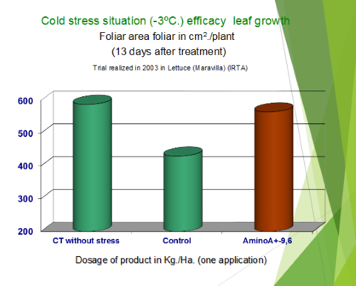 Lettuce Cold Stress Efficacy Leaf Growth