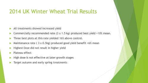Winter Wheat UK 2014 Trials