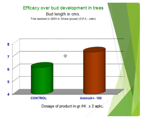 Efficacy over bud development in trees