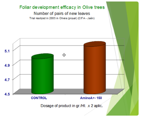 Foliar development efficacy in Olive trees