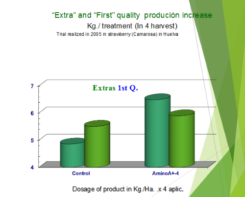 Extra and first quality production increase